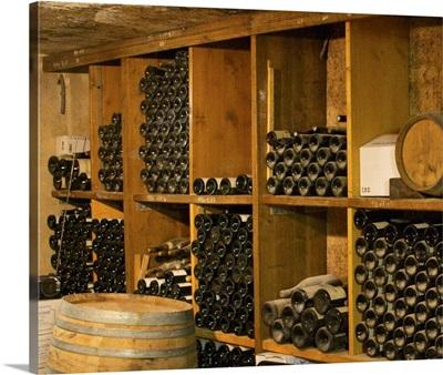 Old wine bottles aging in the wine cellar. Alain Voge, Cornas, Ardeche, Ardeche, France