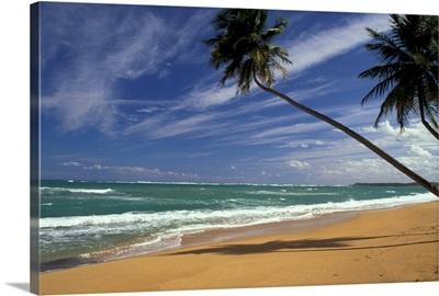 Puerto Rico. Pinone's Beach