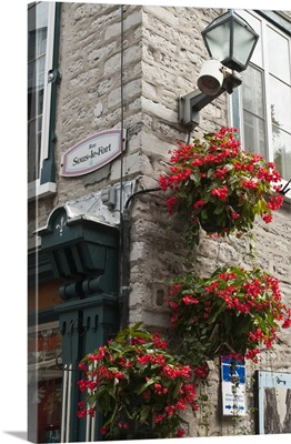 Quebec City, Quebec, Canada, Floral decorations in Old City