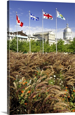 Quebec, Montreal, Old Montreal waterfront and port area, Bonsecours Market