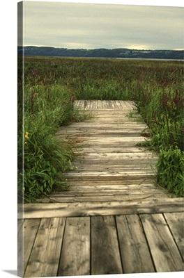 Quebec, Saguenay, Saint-Fulgence, the boardwalk in the Battures de Saint-Fulgence