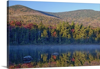 Shoreline reflection, Lily Pond, White Mountain National Forest, New Hampshire
