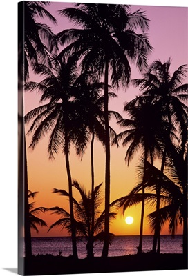 Sunset in the Saint Anne area on the island of Martinique in the Caribbean Sea