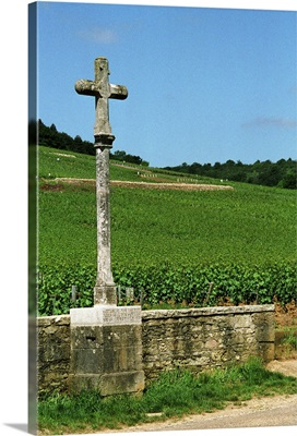 The stone cross marking the Romanee Conti and Richebourg vineyards, France