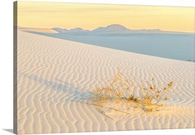 USA, New Mexico, White Sands National Park, Sand Dunes At Sunrise