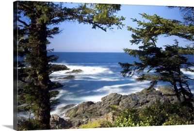Wild Pacific Trail, Ucluelet, Vancouver Island, British Columbia