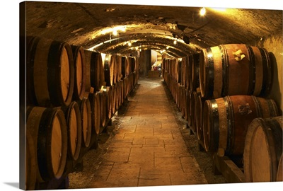 Wooden barrels with aging wine in the cellar of Guigal in Ampuis, Cote Rotie, France