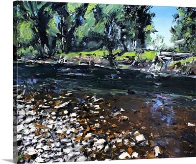 Creek Montana