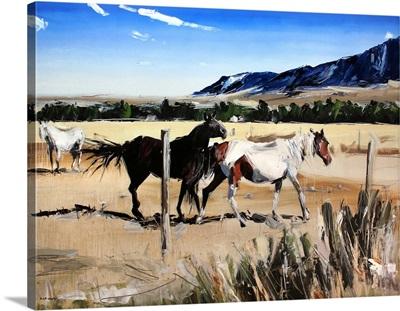 Dancing Horses, Red Lodge, MT