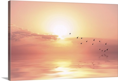 Beautiful Sky On Sunset Or Sunrise With Flying Birds To The Sun