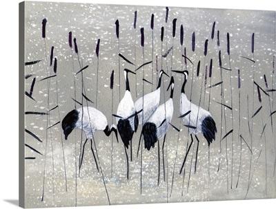 Family Of Cranes