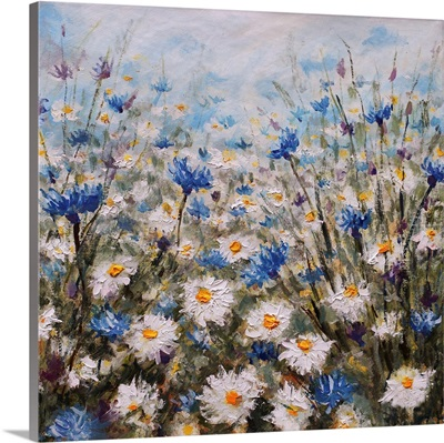 Flowers, Glade Of Cornflowers And Daisies, Summer Flowers