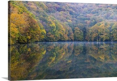 Togakushi's Lake On An Autumn Morning