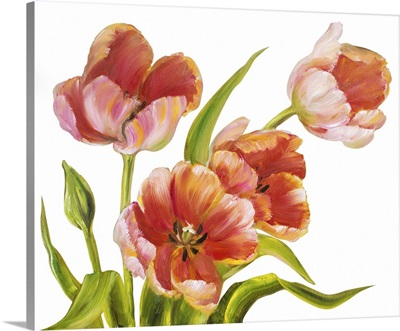 Vintage Red Tulips
