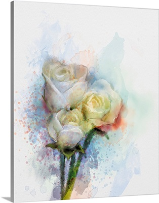 White Roses Floral In Pastel Color With Light Pink And Yellow And Blurred Background