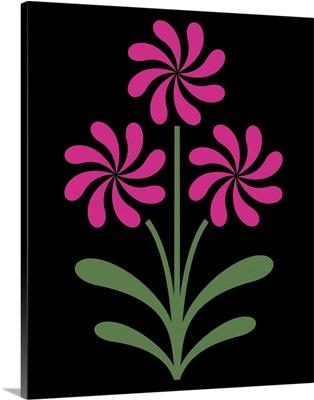 Pinwheel Flowers in Pink on Black