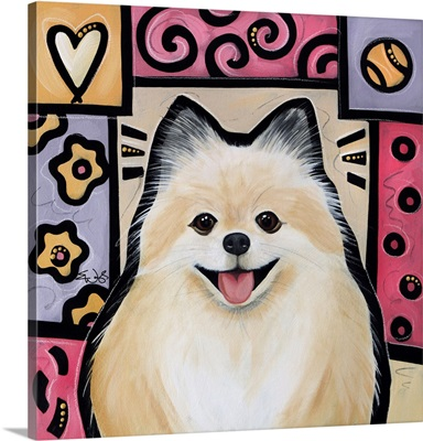 Pomeranian Pop Art