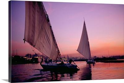 Africa, Egypt, Aswan, Feluccas, (egyptian sailboat) (egyptian sailboat) on Nile river