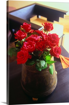 Africa, Morocco, Al-Magreb, Essaouira, Red roses