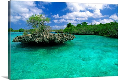 Africa, Seychelles, Aldabra atoll, Outer islands, Aldabra atoll, lagoon