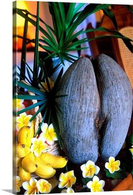 Africa, Seychelles, Praslin, Coco de Mer, double coconut