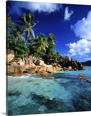 Africa, Seychelles, St Pierre Island