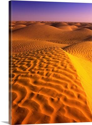 Africa, Tunisia, Desert near Ksar Ghilane oasis