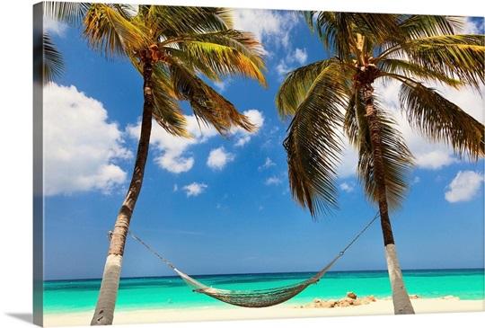 Aruba, Druif Beach, Beach Scene At Tamarijn Resort Wall