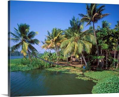 Asia, India, Bharat, Alleppey Backwaters