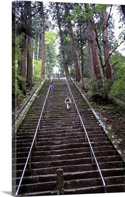 Asia, Japan, Chubu, Minobu, Minobu town, stairs to Minobusan Kuonji temple