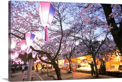 Asia, Japan, Kanto, Hanno, Saitama prefecture, Hanno town