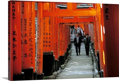 Asia, Japan, Kyoto, Fushimi Inari Shrine, row of torii gates