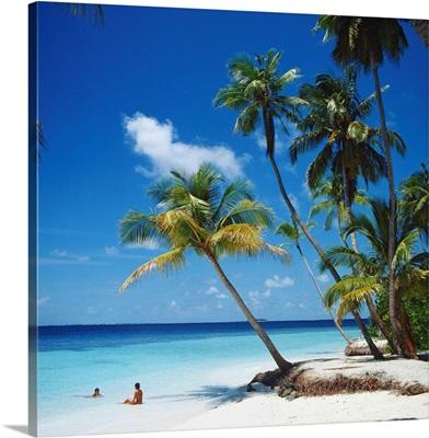 Asia, Maldives, Tropical beach