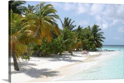 Asia, Maldives, Tropics, , Athuruga Island