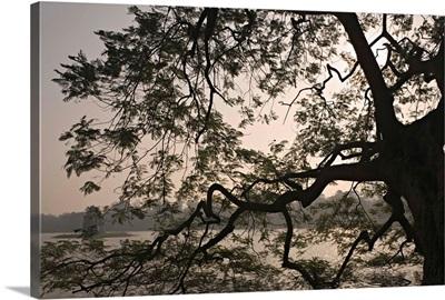 Asia, Vietnam, Hanoi, Thap Rua on Hoan Kiem Lake