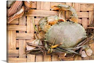 Asia, Vietnam, Hoi An, Crabs for sale at Central Market