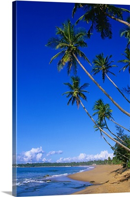 Asia, Ceylon, Sri Lanka, Southern Province, Beach