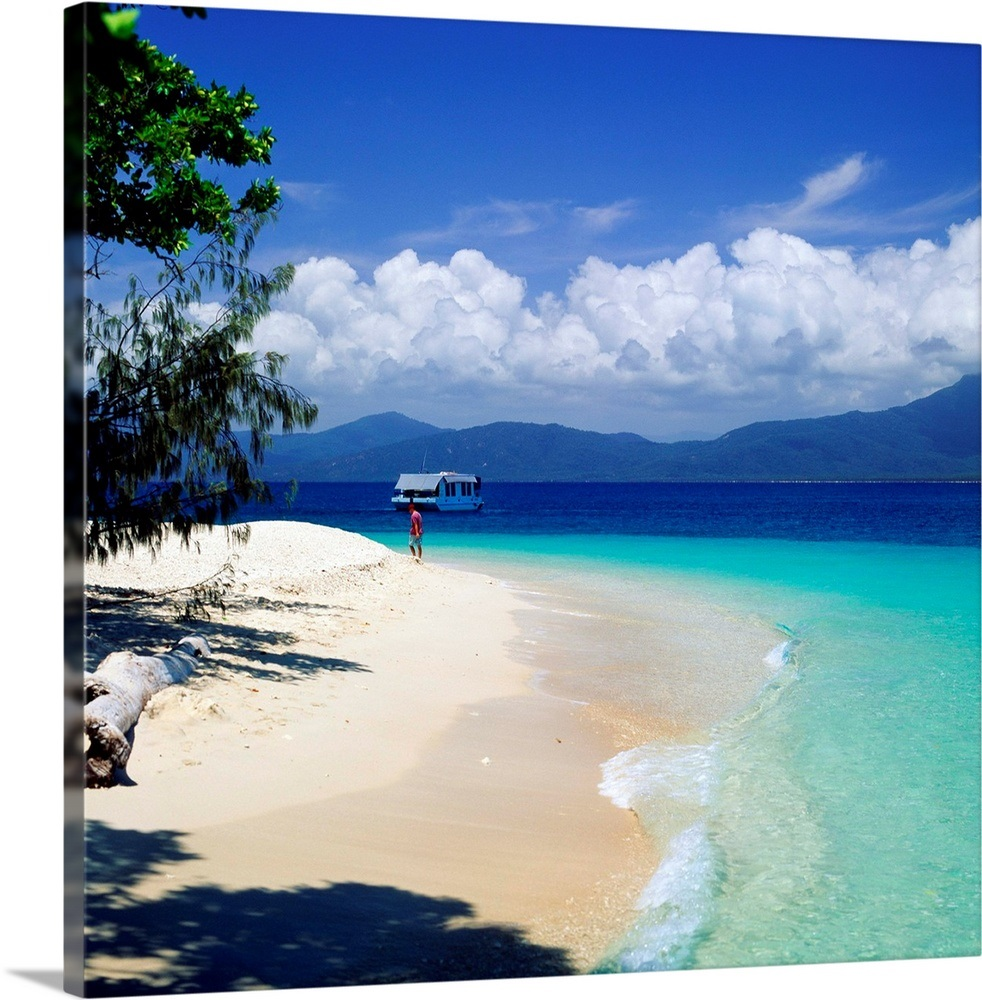 Fitzroy Island: Australia, Queensland, Great Barrier Reef, Fitzroy Island
