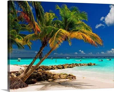 Barbados, Caribbean, Whorthing beach
