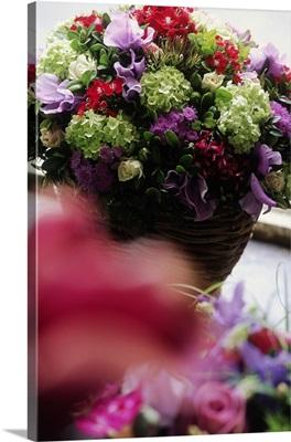 Belgium, floral composition