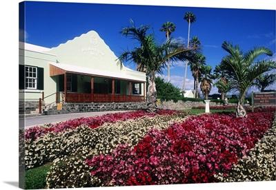 Bermuda, Aquarium, BAMZ