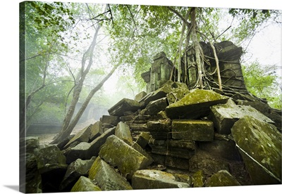Cambodia, Siem Reap, Angkor, tree roots are overtaking the ruins of Ta Prohm Temple
