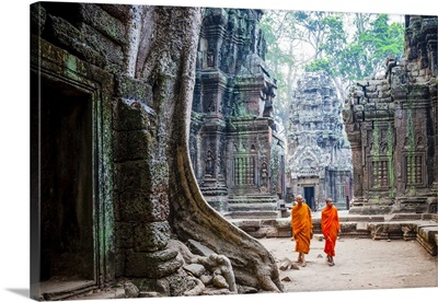 Cambodia, Siemreab, Angkor, Monks walking in the ruins of Ta Phrom Temple