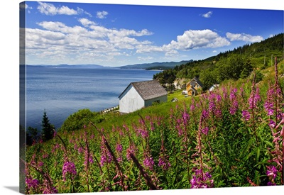 Canada, Quebec, Gaspesie, Forillon National Park, Grand Grave historical site