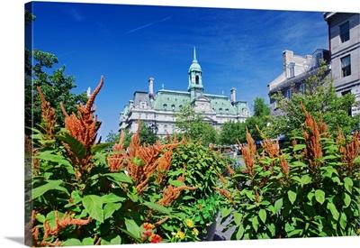 Canada, Quebec, Montreal, Hotel de Ville in Place Jacques-Cartier, Vieux-Montreal