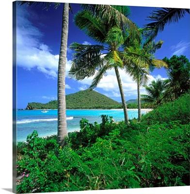 Caribbean, British Virgin Islands, Tortola, Sir Francis Drake Channel
