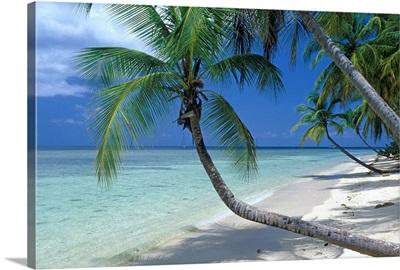 Caribbean, Trinidad and Tobago, Tobago Cays