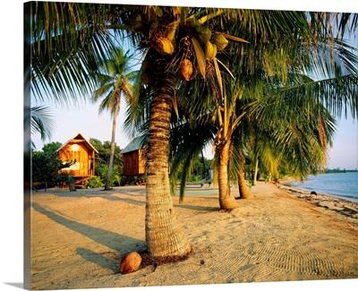 Central America, Belize, Placencia