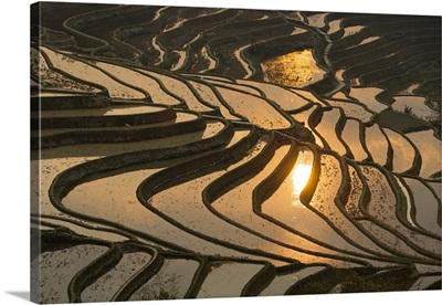 China, Yunnan, Yuanyang, Hani rice terraces