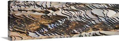 China, Yunnan, Yuanyang, Rice paddy terraces